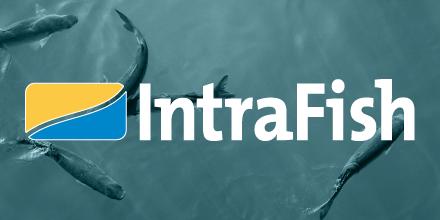 Intrafish.no | De siste nyhetene om oppdrettsnæringen.